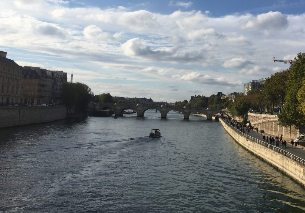 Pont Neuf and Seine River